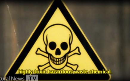 MSV Fluoride